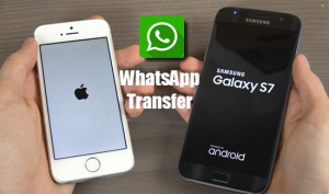 migrate-iphone-whatsapp-messages-samsung-galaxy